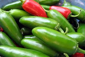 Jalapano hot pepper heirloom seeds