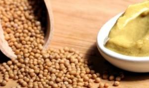 Homemade dijon deli type mustard