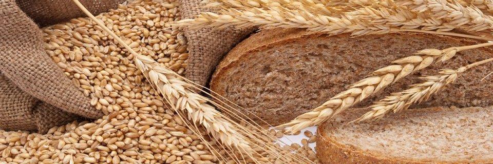 bread-slider2